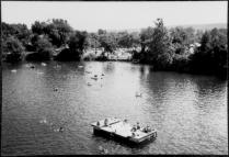 Beaver Dam 1980s 14152001